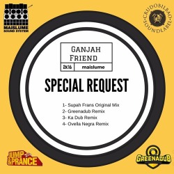 supah frans, ganjah friend, bob Seperman, when I fall in Love, remix, digital, spain, reggae, producer, produccion, propia, españa, dub, roots, rubadub, jump and prance, ting, jump, prance, free, download